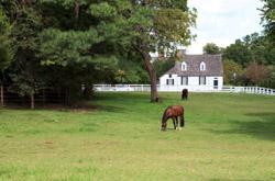 Caroline County VA Real Estate